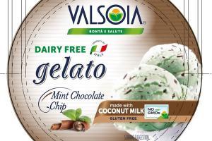 MINT CHOCOLATE CHIP GELATO NON DAIRY FROZEN DESSERT