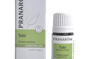 ESSENTIAL OIL, TULSI