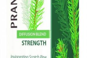 INVIGORATING SCOTCH PINE & RAVINTSARA ESSENTIAL OIL BLEND, STRENGTH DIFFUSION BLEND