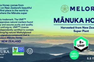 MGO 185+ MANUKA HONEY