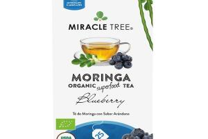 BLUEBERRY MORINGA ORGANIC SUPERFOOD TEA BAGS