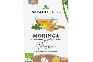 GINGER MORINGA ORGANIC SUPERFOOD TEA BAGS