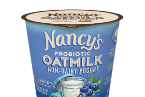 BLUEBERRY PROBIOTIC OATMILK NON-DAIRY YOGURT