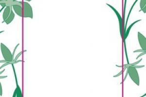 PURE NATURAL PLANT OIL SOAP, LEMONGRASS & LEMON MYRTLE