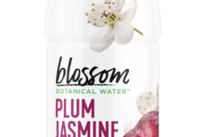 PLUM JASMINE BOTANICAL WATER