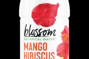 MANGO HIBISCUS BOTANICAL WATER