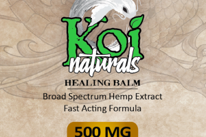 BROAD SPECTRUM HEMP EXTRACT ACTIVE CBD 500 MG HEALING BALM