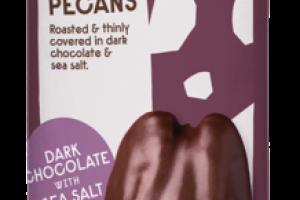 DARK CHOCOLATE WITH SEA SALT PECANS SNACK