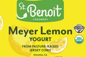 MEYER LEMON YOGURT