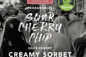 SOUR CHERRY CHIP CREAMY SORBET WITH DARK CHOCOLATE CHIPS