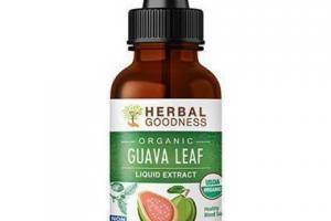 ORGANIC GUAVA LEAF LIQUID EXTRACT DIETARY SUPPLEMENT