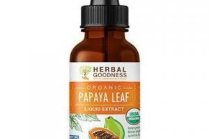 PAPAYA LEAF LIQUID EXTRACT DIETARY SUPPLEMENT