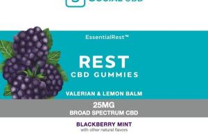 ESSENTIALREST VALERIAN & LEMON BALM BROAD SPECTRUM CBD 25MG DIETARY SUPPLEMENT GUMMIES BLACKBERRY MINT