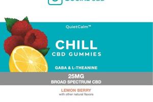 BROAD SPECTRUM CBD 25MG CHILL DIETARY SUPPLEMENTS GUMMIES LEMON BERRY