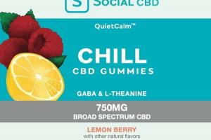 750MG BROAD SPECTRUM CHILL CBD GUMMIES GABA & L-THEANINE DIETARY SUPPLEMENT LEMON BERRY