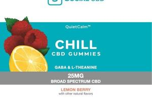 BROAD SPECTRUM CBD GABA & L-THEANINE 25MG DIETARY SUPPLEMENT GUMMIES LEMON BERRY
