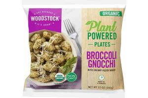 ORGANIC BROCCOLI GNOCCHI WITH CREAMY PESTO SAUCE