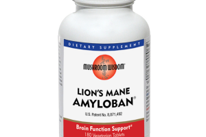 LION'S MANE BRAIN FUNCTION SUPPORT DIETARY SUPPLEMENT VEGETARIAN TABLETS