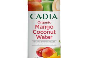 MANGO ORGANIC COCONUT WATER
