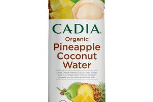 ORGANIC PINEAPPLE COCONUT WATER