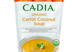 ORGANIC CARROT COCONUT SOUP