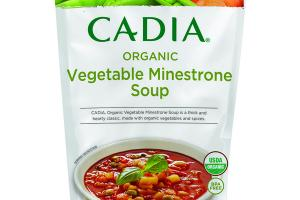 VEGETABLE MINESTRONE ORGANIC SOUP