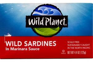 WILD SARDINES IN MARINARA SAUCE