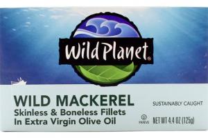 WILD MACKEREL IN EXTRA VIRGIN OLIVE OIL