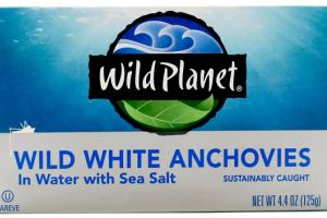 WILD WHITE ANCHOVIES IN WATER WITH SEA SALT