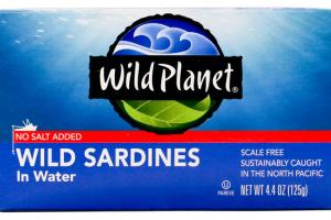WILD SARDINES IN WATER