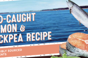 GRAIN FREE WILD-CAUGHT SALMON & CHICKPEA RECIPE DOG FOOD