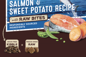 GRAIN FREE WILD-CAUGHT SALMON & SWEET POTATO RECIPE WITH RAW BITES DOG FOOD