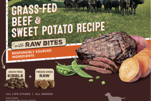 GRAIN FREE GRASS-FED BEEF & SWEET POTATO RECIPE WITH RAW BITES DRY DOG FOOD