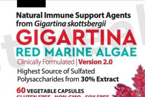 GIGARTINA RED MARINE ALGAE NATURAL IMMUNE SUPPORT AGENTS FROM GIGARTINA SKOTTSBERGII DIETARY SUPPLEMENT VEGETABLE CAPSULES