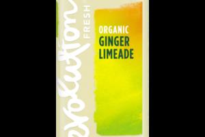 ORGANIC GINGER LIMEADE COLD-PRESSED FRUIT JUICE DRINK