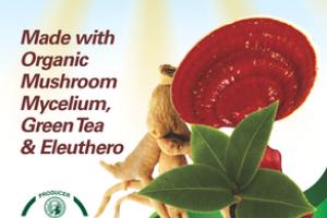 ORGANIC MUSHROOMS MYCELIUM, GREEN TEA & ELEUTHERO PROMOTES IMMEDIATE & SUSTAINED ENERGY GLUTEN FREE DIETARY SUPPLEMENT VEGETARIAN CAPSULES