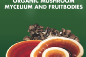 ORGANIC MUSHROOMS MYCELIUM AND FRUITBODIES COMPREHENSIVE IMMUNE SUPPORT DIETARY SUPPLEMENT EXTRACT
