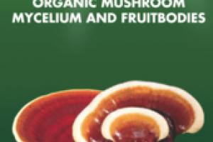 ORGANIC MUSHROOMS MYCELIUM AND FRUITBODIES LONGEVITY SUPPORT GLUTEN FREE DIETARY SUPPLEMENT EXTRACT
