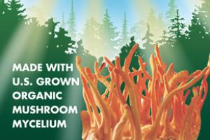 ORGANIC MUSHROOMS MYCELIUM ENERGY SUPPORT GLUTEN FREE DIETARY SUPPLEMENT VEGETARIAN CAPSULES