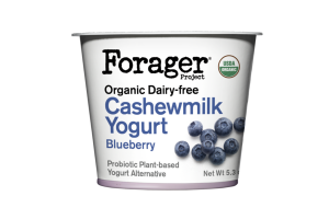 BLUEBERRY ORGANIC DAIRY-FREE CASHEWMILK YOGURT