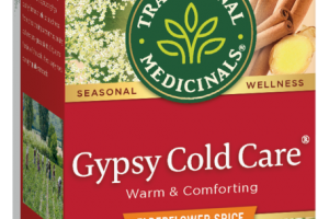 GYPSY COLD CARE WARM & COMFORTING HERBAL SUPPLEMENT TEA BAGS, ELDERFLOWER SPICE