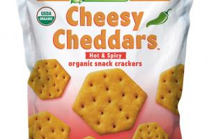HOT & SPICY ORGANIC SNACK CRACKERS