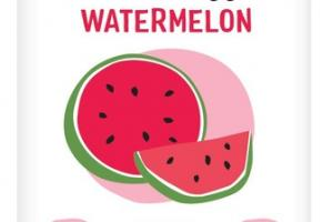 XYLITOL SWEETENED NATURAL CHEWING GUM WATERMELON