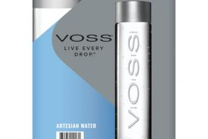 ARTESIAN WATER