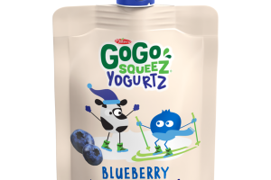 BLUEBERRY LOW FAT YOGURT ON THE GO YOGURTZ