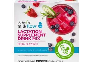 LACTATION DIETARY SUPPLEMENT DRINK MIX BERRY