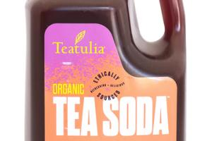 GREEN TEA + PEACH + BLACKBERRY + LIME + CILANTRO ORGANIC TEA SODA CONCENTRATE