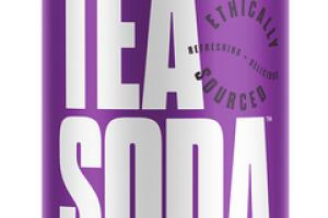 LEMONGRASS TEA WILD BERRY, LIME, LAVENDER ORGANIC TEA SODA
