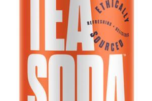 GREEN TEA PEACH, BLACKBERRY, LIME, CILANTRO ORGANIC TEA SODA