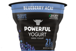 BLUEBERRY ACAI GREEK YOGURT